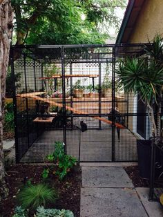 Catio: like these narrow kennel for cats or small dogs. - Catio: like these narrow kennel for cats or small dogs. Catio: like these narrow kennel for cats or small dogs. Diy Cat Enclosure, Outdoor Cat Enclosure, Cat Kennel, Cat Cages, Cat Run, Outdoor Cats, Outdoor Cat Cage, Cat Playground, Cat Condo
