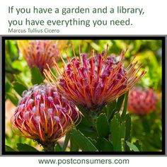 A garden and a library indeed. We may love this quote as much for the books as the flowers.