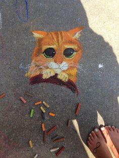 Puss n Boots sidewalk chart art