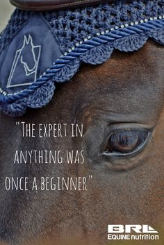 remember this and be nice to beginners! Nobody ever could ride perfectly from the first day on, not even you.
