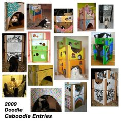 1000 images about chats etc on pinterest cat tent. Black Bedroom Furniture Sets. Home Design Ideas