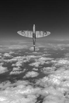 Beautiful Warbirds (Posts tagged world war ii) Ww2 Aircraft, Fighter Aircraft, Military Aircraft, Aircraft Photos, Airplane Art, Airplane View, Photo Avion, Supermarine Spitfire, Ww2 Planes