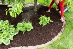 Gardener doing mulch work around the house Mulch Landscaping, Landscaping With Rocks, Modern Landscaping, Summer Garden, Home And Garden, Brown Mulch, Organic Mulch, Garden Maintenance, Weed Control