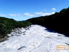 Glacier river, Fox G