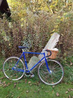 Artist Mary Bauermeister's garden at the end of an Autumn bike ride.