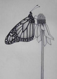 Lápiz arte trabajar mariposa abrazando una flor en blanco y negro Original dibujo-Print