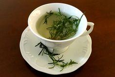 Gluten Free: Chá de Alecrim