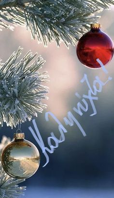 Christmas Bulbs, Merry Christmas, Xmas, Good Morning Good Night, Night Photos, Holiday Decor, Quotes, Women, Merry Little Christmas