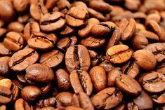 Avreste mai pensato che i fondi del caffè potessero esservi utile nell'orto? Sì perché il caffè, anche quando già utilizzato, può essere davvero utile per concimare non solo fiori e piante, m…