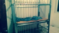 Im disgusted by this: Man With Autism Found Locked In Caged Bed