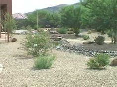 Beautiful Backyard Desert Landscape.  This is from an Arizona business, but we need desert landscaping here in Las Vegas as well.  Looks very relaxing.