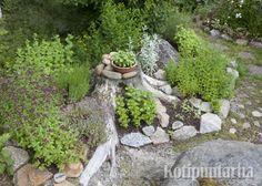 Kannoista kannattaa hankkiutua eroon harkiten. Helpompi tapa on tehdä niistä osa puutarhan rakenteita. www.kotipuutarha.fi