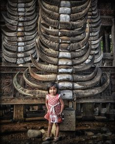 """232 Likes, 12 Comments - Photographer / Drone Pilot (@dianmarteen) on Instagram: """"Tongkonan. Exterior of Torajanese traditional house. . . . . . . #toraja #tongkonan #exteriordesign…"""""""