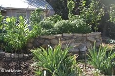 Keyhole gardens