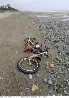 Another photo of the Japanese tsunami bike that washed up in Canada