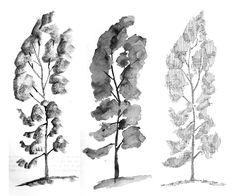 imagenes de como dibujar un arbol - Buscar con Google
