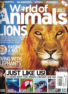 World Of Animals Magazine Lions Elephants Wolves Chimps Whales Parrots Wasps