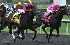 Kentucky Derby 2014: Handicapping the Spiral Stakes - Florida Filly - Horse Racing Nation.
