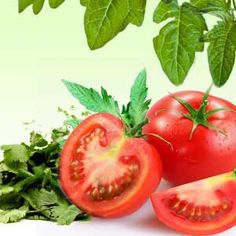 Tomato Leaf Corriander Fragrance Oil by Natures Garden is a tomato leaf fragrance oil used in candles and soaps. Fresco, Wholesale Fragrance Oils, Aroma Beads, Green Soap, Cancer Fighting Foods, Green Tomatoes, Fruit Art, Cold Process Soap, Kraut