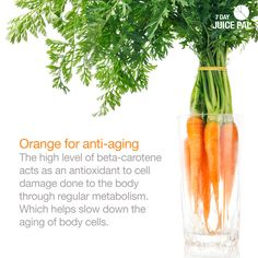 Orange for anti-aging The high level of beta-carotene  acts as an antioxidant to cell  damage done to the body  through regular metabolism.  Which helps slow down the aging of body cells. #7dayjuicepal #goorange