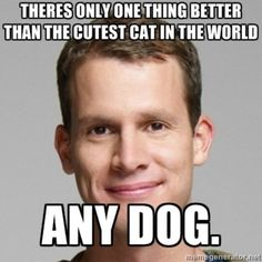 dogs > cats.