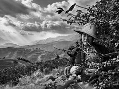 Em sua última expedição pelo mundo, sempre com uma câmera na mão, Sebastião Salgado teve como  [...]