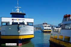 CityPASS San Francisco attraction: Blue & Gold Fleet Bay Cruise Adventure