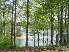 Laurel Lake at Daniel Boone National Forest, Kentucky