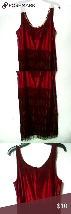 🎉🎉 SALE 🎉🎉20s Flapper Halloween Costume Worn once for Halloween. Somewhat tight fitting. Dresses