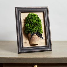 Ophelia & Co. This chic picture frame features a mini topiary made out of real preserved moss! Perfect for the kitchen, bathroom, mantle, or anywhere in your home. This adorable piece also makes for a perfect gift! Moss Wall Art, Moss Art, Tabletop Accessories, Painting Of Girl, Nature Decor, Summer Diy, Diy Frame, Plant Hanger, Framed Wall Art