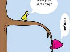 Diet LMAO