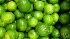 Limones criollos!