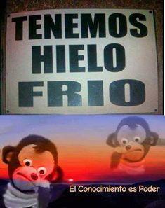 Funny Animal Memes, Funny Memes, Jokes, Let Me Down, Spanish Memes, Quality Memes, How To Speak Spanish, Jelsa, Creepypasta