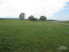 Culloden Battlefield, Drumossie Moor by Travelpod Member Megassel