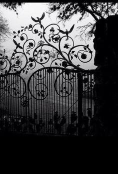 Very creepy cool gate. Zilker Botanical Garden gate on a foggy morning- Zilker Park, Austin Texas by Bill Oriani. Art Nouveau, Zilker Park, Castle Gate, Night Circus, Wrought Iron Gates, Foggy Morning, Iron Work, Garden Gates, Garden Entrance