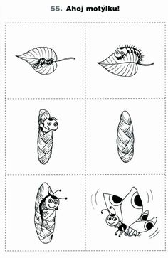 Ahoj motýlku | Výtvarná výchova  #motyl #metamorfoza_motyla #metamorfoza #pracovni_list #housenka #kukla #list #butterfly #metamorphosis #butterfly_metamorphosis #leaf #chrysalis #caterpillar #Worksheet