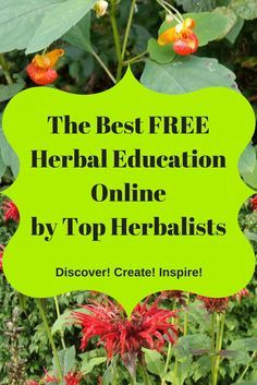 The Best FREE Herbal Education Online by Top Herbalists - Best Free Herbal Education online by top herbalists , Free online herbalism courses, free herbal remedies videos Cold Home Remedies, Natural Health Remedies, Herbal Remedies, Holistic Remedies, Healing Herbs, Medicinal Plants, Natural Healing, Natural Medicine, Herbal Medicine