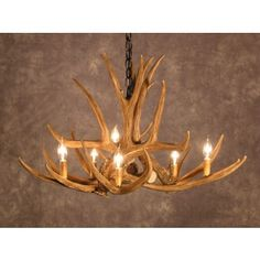 Mule Deer 6 Cast Antler Chandelier - Measures 32 wide and 20 tall, weighs just 6 lbs.CA Mule Deer 6 Cast Antler Chandelier - Measures 32 wide and 20 tall, weighs just 6 lbs.CA Mule Deer 6 Cast Antler Chandelier - Made in the USA, measures 32 wide and Deer Antler Chandelier, Antler Lights, Rustic Chandelier, Rustic Lighting, Cabin Lighting, Chandelier Lighting, Lighting Ideas, Antler Crafts, Antler Art
