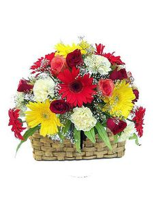 A Basket of 22 mix flowers like Yellow Gerberas, Roses and White Carnation with seasonal ferns n fillers. This bouquet of mixed color flowers with baby's breath and greens in a beautiful classic arrangement is a refreshing change to sending Red or Pink Roses. Send this absolutely stunning bouquet of elegance and whimsy to the one you love.
