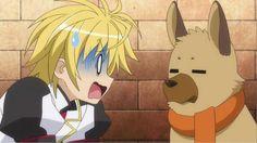 dog_days-03-shinku-funny Moe Manga, Moe Anime, Dog Days Anime, Manga Tutorial, Animal Ears, Another World, Dog Cat, Creatures, Tutorials
