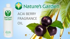 Acai Berry Fragrance