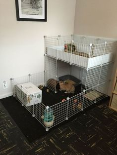 Rabbit run + Guinea Pig condo Diy Bunny Cage, Bunny Cages, Rabbit Cages, House Rabbit, Indoor Rabbit Run, Indoor Guinea Pig Cage, Rabbit Hutch Indoor, Rabbit Pen, Pet Rabbit