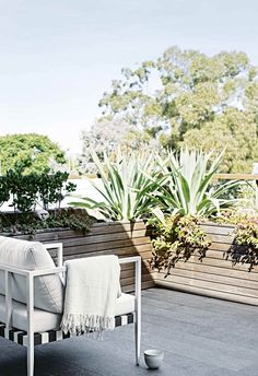An all-white industrial-style home with minimalist charm in Sydney Balcony Plants, Outdoor Balcony, Rooftop Garden, Outdoor Rooms, Outdoor Gardens, Outdoor Furniture Sets, Outdoor Decor, Balcony Garden, Outdoor Dining