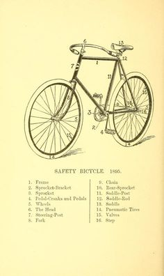 Pleasure-cycling Safety Bicycle 1895