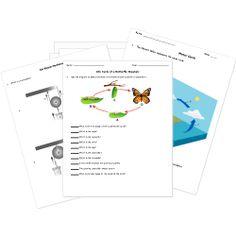 free math printable worksheets website homeschool pinterest. Black Bedroom Furniture Sets. Home Design Ideas