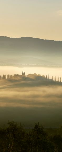 Our stay at the Adler Thermae spa and resort in Tuscany Italy!   Exploring Tuscany, Italy   Luxury Trip in Tuscany   Where to Stay in Tuscany   Adler Thermae Tuscany Italy   Ideas for Italy vacations   Italy holidays Tuscany
