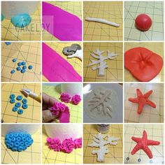 Helpful coral and sea star tutorial from Facebook