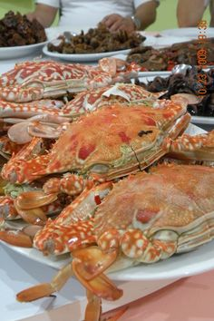 Steamed Bluecrabs: Lambay