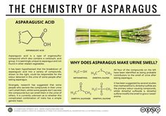 Why asparagus makes pee smell funny, and other amazing facts about everyday foods and spices, Business Insider - Business Insider Singapore Science Chemistry, Food Science, Organic Chemistry, Science And Nature, Gcse Science, Chemistry Humor, Science Classroom, Science Education, Pee Smell