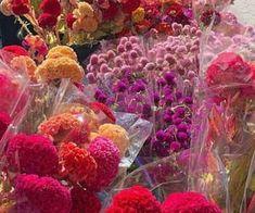 Spring Aesthetic, Flower Aesthetic, My Flower, Beautiful Flowers, Fresh Flowers, Wild Flowers, Sogetsu Ikebana, Animal Design, Pretty Pictures
